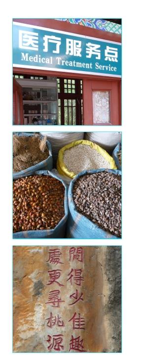 TCM – Traditionelle Chinesische Medizin